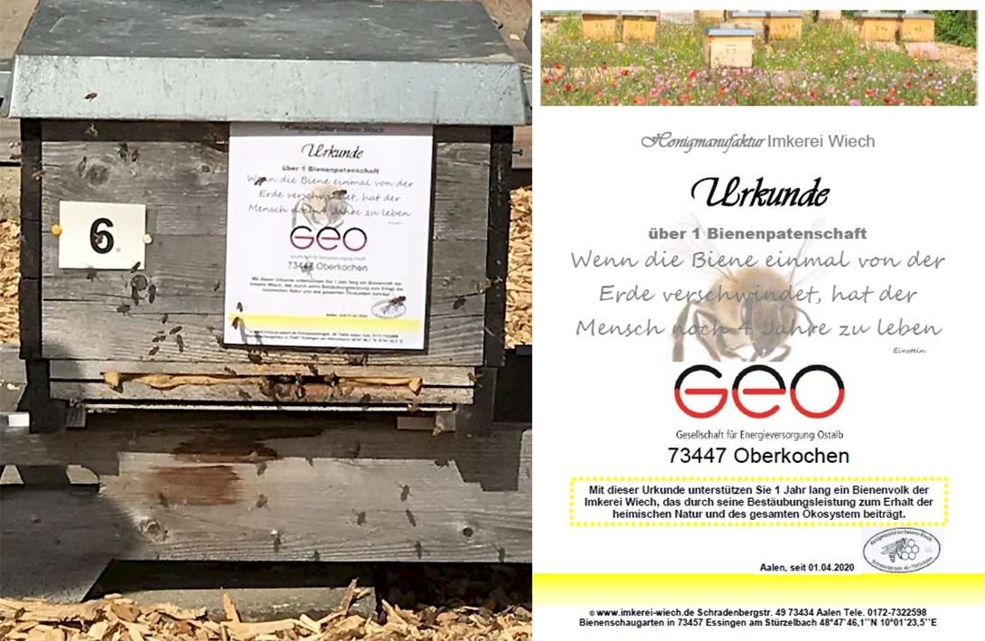 Bienenpatenschaft – GEO Energie Ostalb